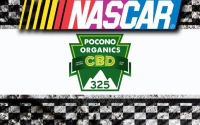 NASCAR Pocono Organics CBD 325 Handicapping Preview and Betting Tips